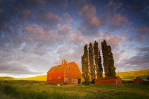 TWE_MG_3512.jpg  NA,USA,Washington,Colfax,Palouse Country,Red Barn with Last Evening Light in Canola Field