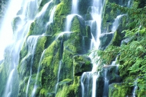 TWE38117.jpg  North America,USA,Oregon,Proxy Waterfall in Oregon's Umpqua National Forest